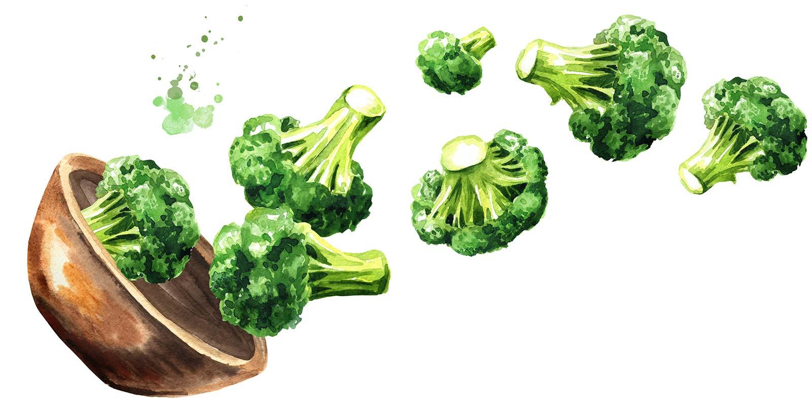 Brocolli at Menu Fresh