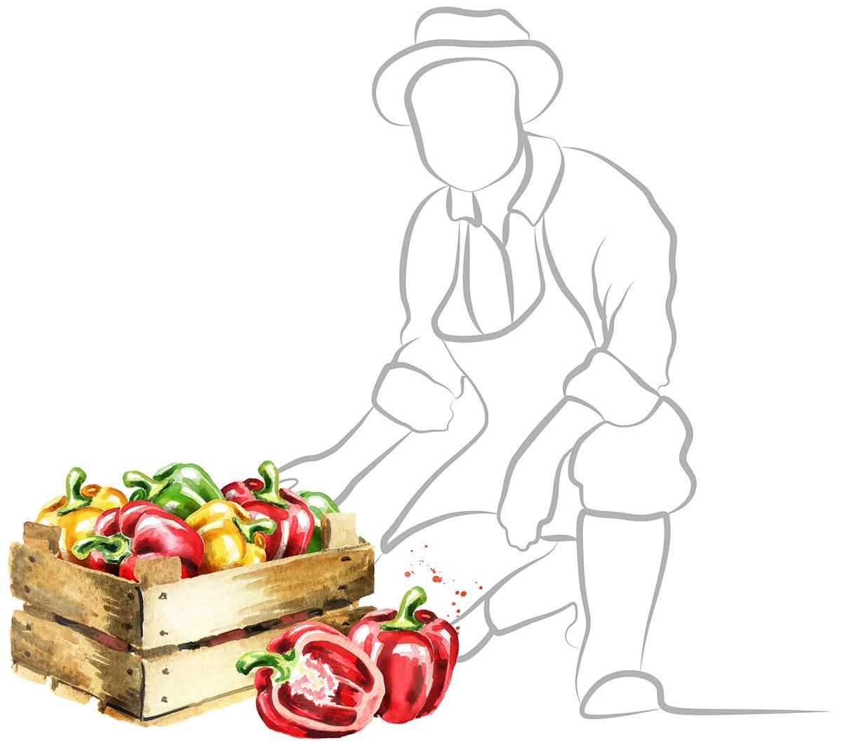 Menu Fresh local suppliers