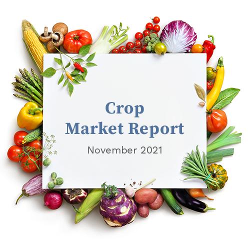 Crop Market Report November 2021